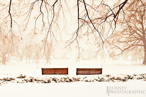 Picture of snowfall on benches, Major's Hill Park, Ottawa, Canda