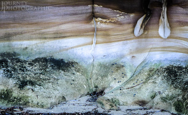 Picture of pastel limestone rock textures and colours, Port Hacking Estuary, Sydney