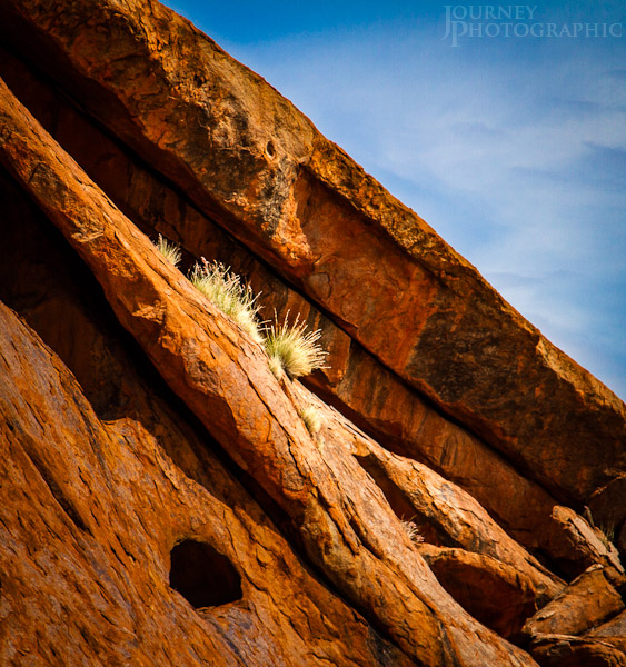 Detail picture of the rock and grass of Uluru (Ayers Rock), Central Australia