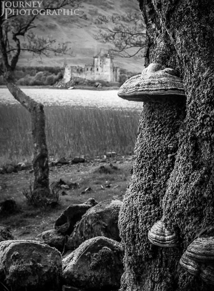 Black and white picture of Kilchurn Castle, Loch Awe, Scotland with mushrooms